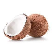cocos_web
