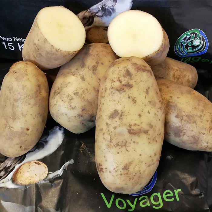 patata voyager