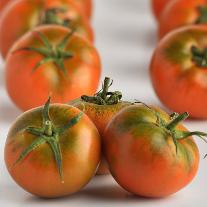 tomate lineal 2