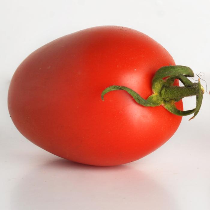 tomate pera und