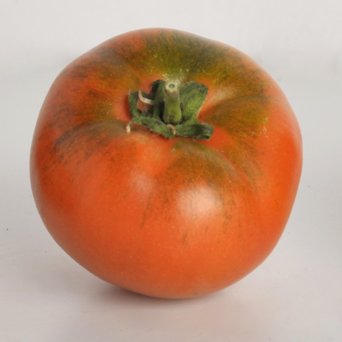 tomate und 2